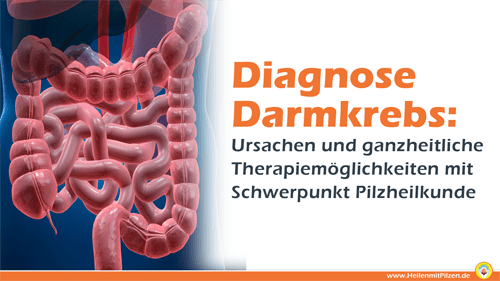 Webinar Diagnose Darmkrebs